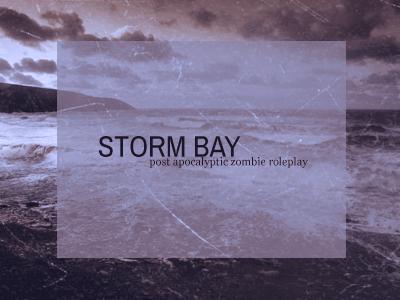 STORM BAY